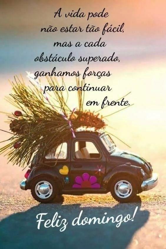 Imagem De Frases De Amizade Por Zelia Pita Da Silva Mensagem De