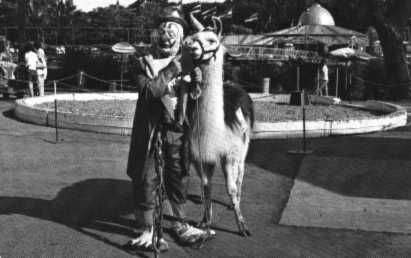 Clown and Llama postcard
