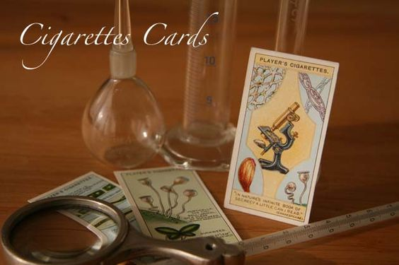 cigarettes card/シガレットカード - オリザ書店