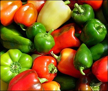 Growing your best peppers ever: tips for success. You may still be able to get some in the ground this year. If not, then these tips will help you next year.: