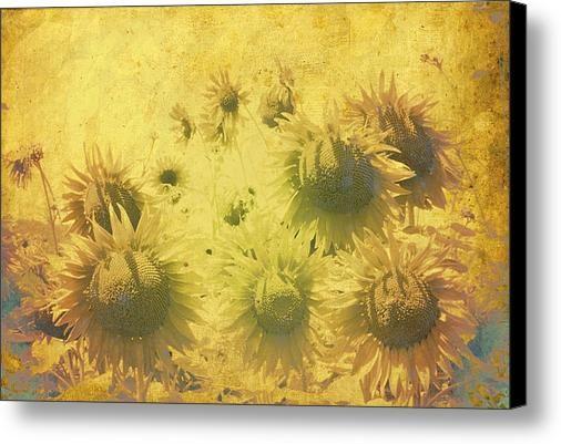 Inner Sunshine Canvas Print / Canvas Art By Dorothy Berry-lound #healingart #printforsale #spiritual #interiordecor