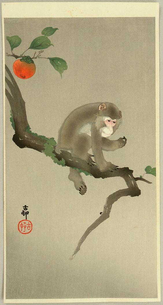 Monkey in a Tree, early 20th century  Ohara Shoson