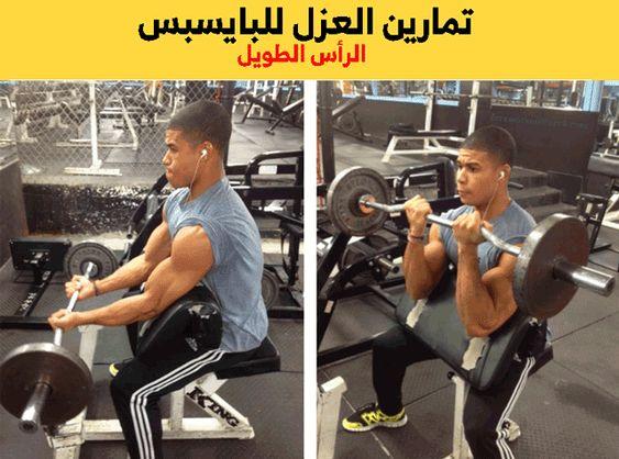 تمارين البايسبس Biceps Workout Workout Biceps
