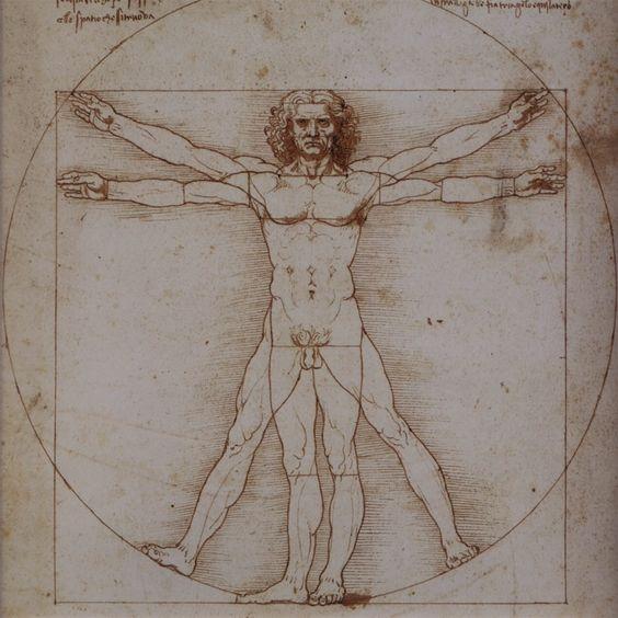 Vitruvian Man, Leonardo Da Vinci