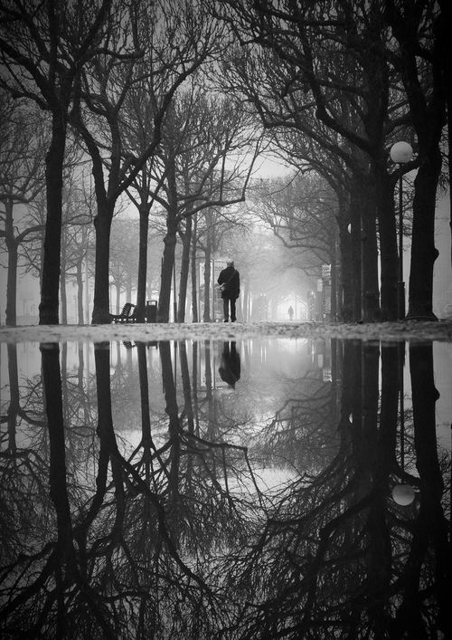 ✿ Black and White Man Walking in the Mist with the Trees    #photography #black #white