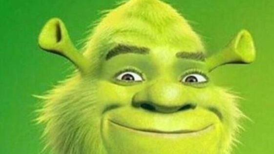 20 Best Funny Photos For Your Tuesday Shrek Memes Really Funny Memes Funny Relatable Memes