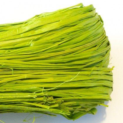 Fibres de raphia naturel en pelote de couleur vert anis.