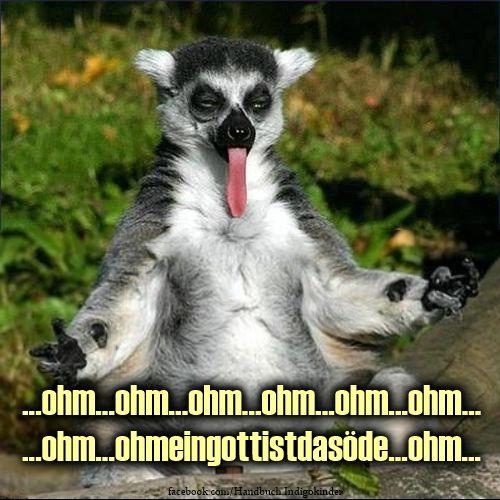 """Meditation bedeutet nicht, immer nur stillschweigend rumzusitzen. Achtsam zu meditieren heißt, auf deinen Verstand die Eindrücke des """"Jetzt"""" einwirken zu lassen. #zitate #Deutsch"""