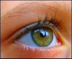 उपचार और प्रयोग: आँखों की समस्याओं और नेत्रज्योति-वृद्धि -