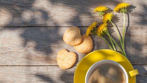 #Dandelion #Kaffee #Rezept: Wie du ganz einfach Kaffeeersatz selbst herstellst