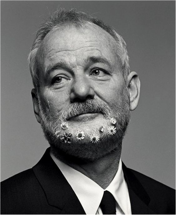 Bill Murray (a lasting impression: Where the Buffalo Roam, Caddyshack, Stripes, Ghost Busters, The Razor's Edge, Scrooged, Quick Change, What About Bob?, Groundhog Day, Ed Wood, Larger Than Life, The Man Who Knew Too Little, Rushmore, Lost in Translation, Coffee and Cigarettes, The Life Aquatic with Steve Zissou, Broken Flowers, Get Low, Hyde Park on Hudson...):