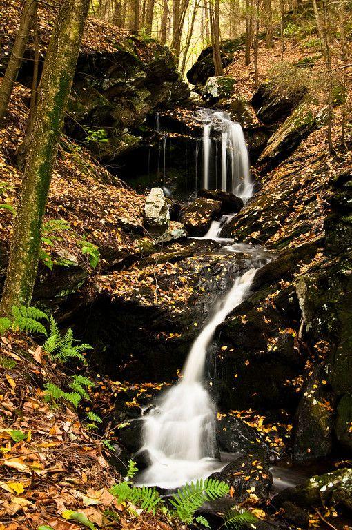 Ayers Gap/Bailey's Ravine, Franklin, CT. Autumn