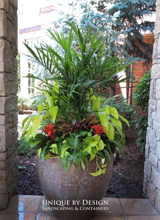Unique by Design ~ Container Gardens by Helen Weis