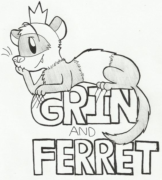 Grin and Ferret! new tumblr!