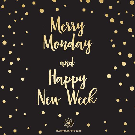 Merry Monday and happy new week! #monday #mondaymotivation #motivation