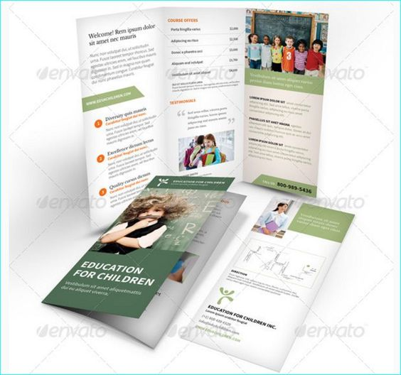 Best  School Brochure Template For Education Institution