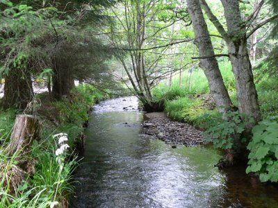 My dream house will be near, but not too near, a babbling brook.