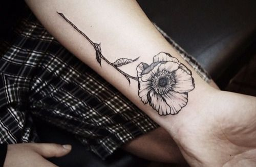 tattoo, ink, forearm, poppy, nature, simple, flower, floral