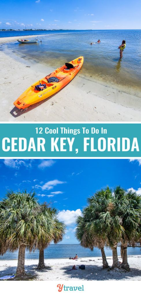 12 Amazing Things To Do In Cedar Key Where To Eat Stay Florida Vacation Spots Florida Travel Cool Places To Visit