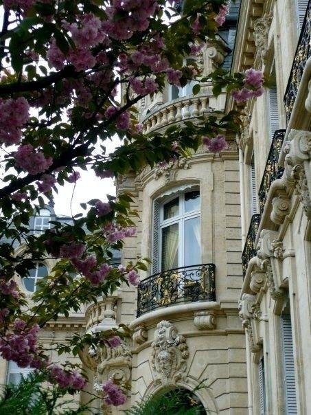 paris window/balcony
