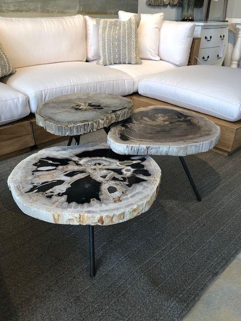 Arhaus Petrified Wood Coffee Tables Petrified Wood Table