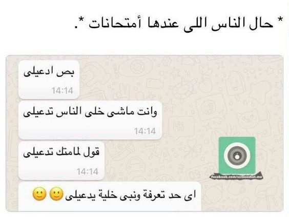 Pin By 𝒎𝒊𝒅𝒏𝒊𝒈𝒉𝒕 On M E M E S In 2020 Funny Words Funny Quotes Arabic Funny