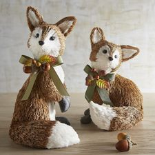 Natural Standing & Sitting Foxes