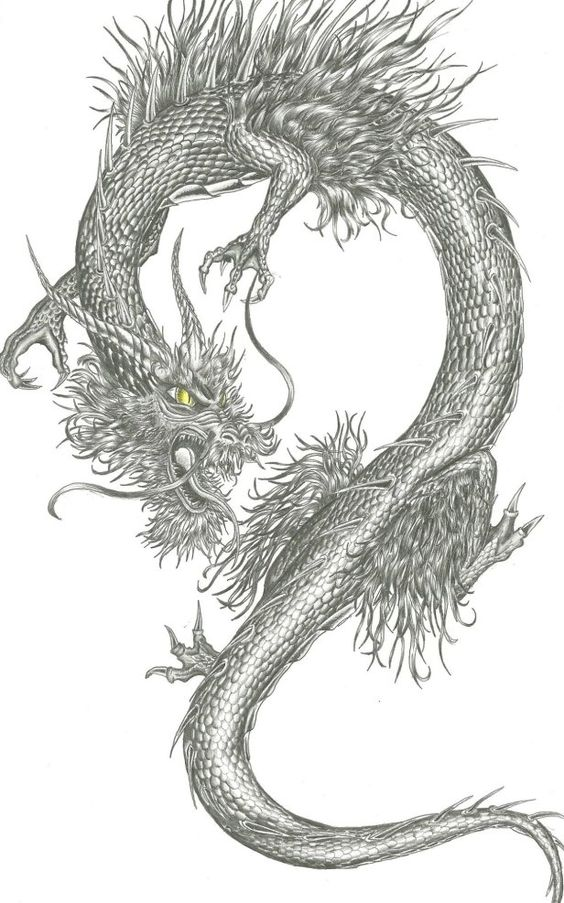 Pinterest the world s catalog of ideas for Jade dragon tattoo