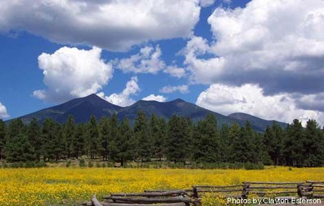 Flagstaff, AZ..Went here on our way back home to Mo from Ca. BEAUTIFUL place