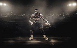 WALLPAPERS HD: LeBron James Basketball Player