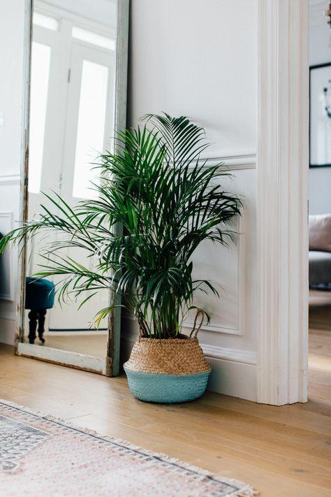 decoración con plantas verdes y grande espejo apoyado en el suelo, muebles entrada en estilo vintage