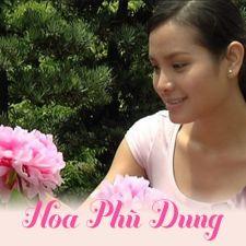 Hoa Phù Dung -