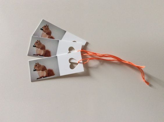 Squirrel gift tag hand painted by artist Ruth Goodwin, Animals, Birthday, Kids, woodland, £1.99