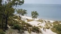 Indiana Dunes State Campground: