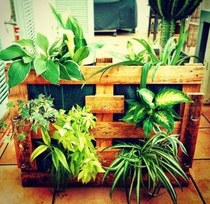 Pallet planters