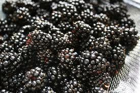 blackberry jam - Google Search