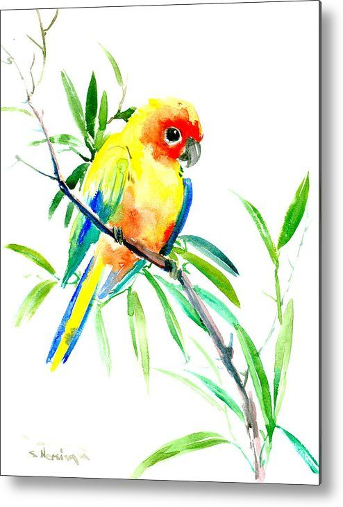 Sun Parakeet Metal Print By Suren Nersisyan Parrot Painting Watercolor Bird Parakeet Art