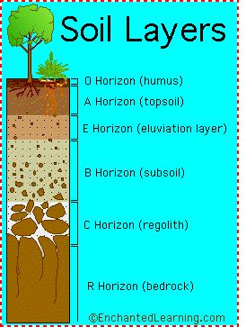 soil layers diagram cc cycle 1 week 14 science sampler. Black Bedroom Furniture Sets. Home Design Ideas