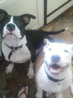 Bubba and Kia Mae