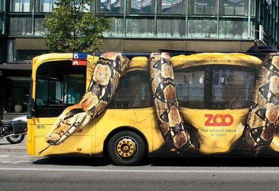 Giant constrictor snake squeezing complete Copenhagen citybus.