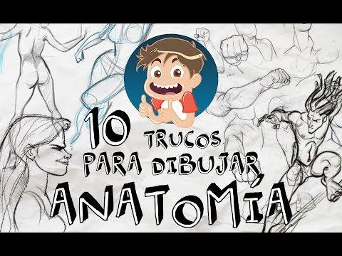 Los Danidibus 10 Trucos Para Dibujar Anatomia Youtube Trucos Para Dibujar Anatomia Trucos