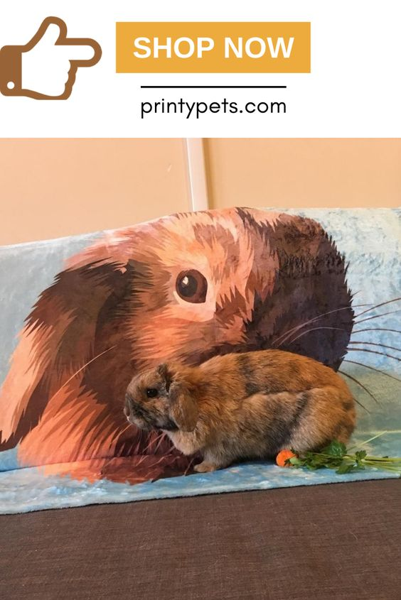 Custom Pet Print Fleece Blanket With Images Pets Puppy Beds Your Dog