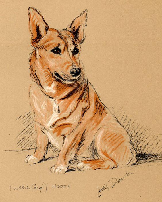 1937 LUCY DAWSON Vintage Colour Dog Print HOPPY the Welsh Corgi
