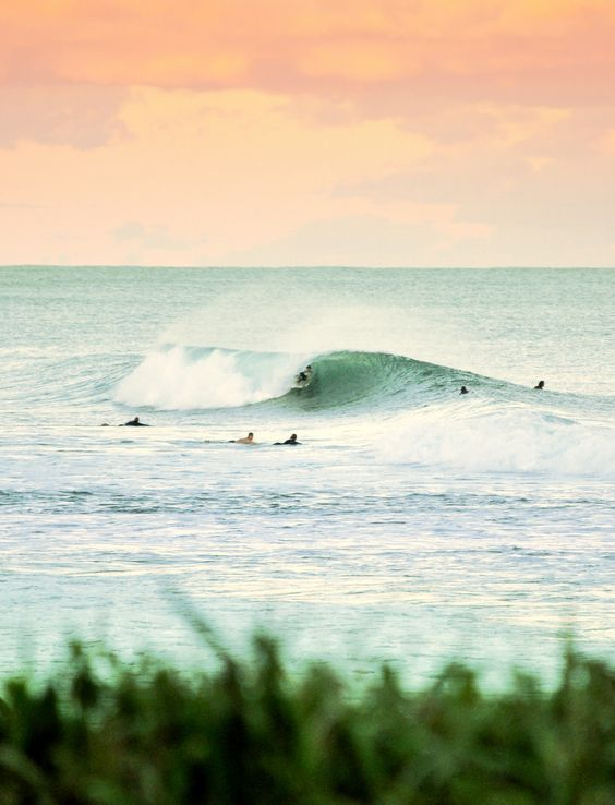 Just when we thought the beach couldn't be more beautiful. #surfing