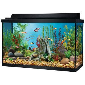 Top fin 29 gallon aquarium starter kit aquariums for 50 gallon fish tank starter kit