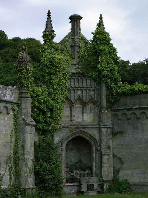 Ivy Castle Walls, Margam, Wales