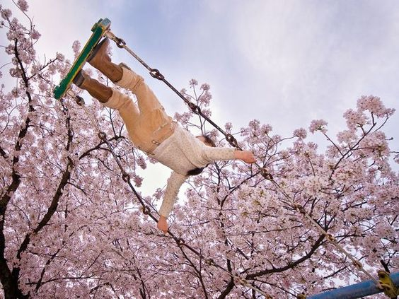 Cherry Tree Swing, Japan    Photograph by Kevin Cozma, Your Shot    Cherry blossoms are synonymous with spring in Japan. This young girl is swinging into spring in a neighborhood park in Japan. I used a wide angle lens angled up in order to make this already high swinger seem sky-high.