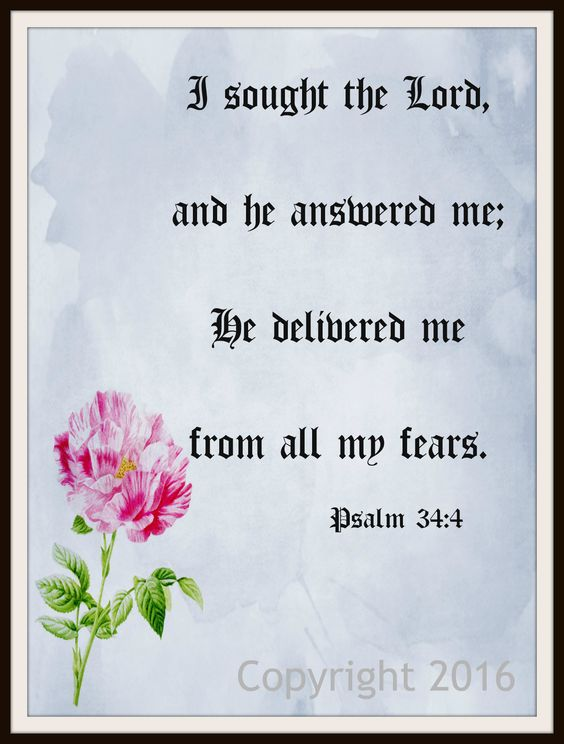 """Scripture Art Print """"I Sought the Lord"""", Wall Decor, 8 x 10"""" Unframed Motivational Quote"""