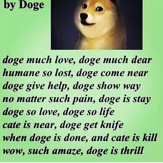 Doge poem