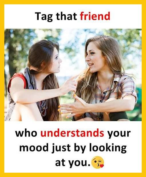 Crazistan Know The Craziest Crazistan Brings You With Latest Celebrity News Hot Movie Trailers And Wha Friends Quotes Funny Friendship Quotes Friends Quotes